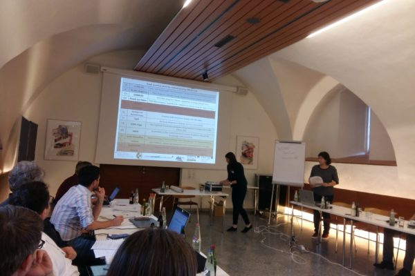 7th_EUSALP_AG8_Meeting_Seggau_4