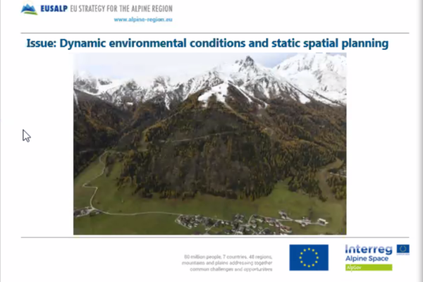 EUSALP_AG_Virtual_Meeting_29May2020_Issues_Spatial_Planning
